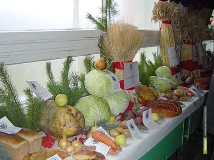 В Тамбове построят рынок сельхозпродукции