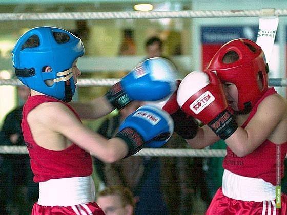 Тамбовские боксеры выйдут на ринг в честь Дня Победы