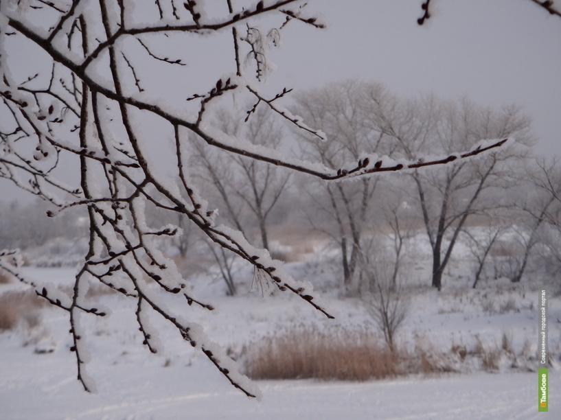 Тамбов накроют аномальные холода