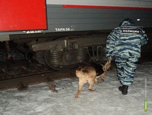 Мужчина, «заминировавший» поезд, оказался бывшим полицейским
