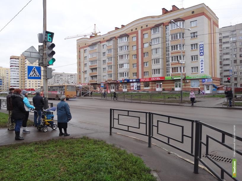 В Тамбове пешеходы стали реже гибнуть на дорогах