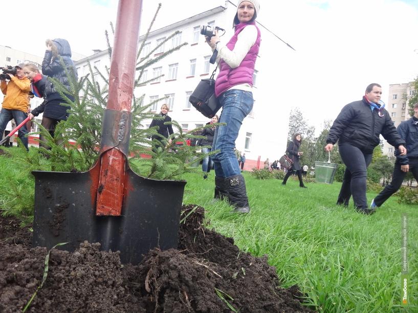 Во всероссийской акции «Живи, лес!» приняли участие 1250 тамбовчан