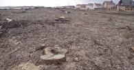 Территорию под сквер Олимпийский уже полностью очистили от старых деревьев