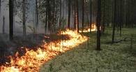 В области подвели итоги пожароопасного сезона