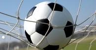 Первую после каникул игру тамбовские футболисты проведут на новом месте
