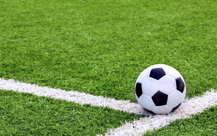 Тамбовские и мичуринские студенты сыграют в футбол