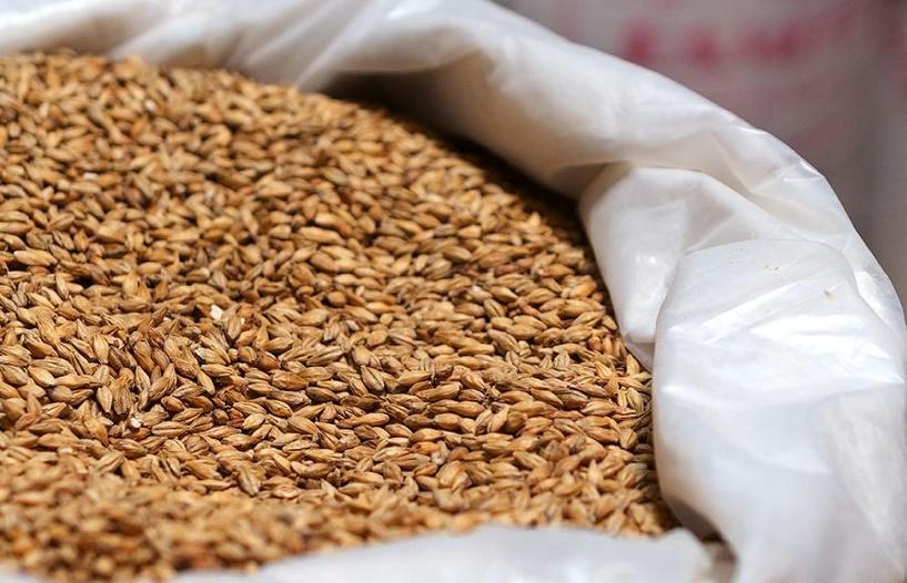 Мичуринский пожарный инспектор получил взятку зерном