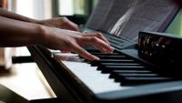 Полиция Владивостока перепутала детское пианино с бомбой