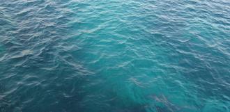 Чёрное море стало бирюзовым