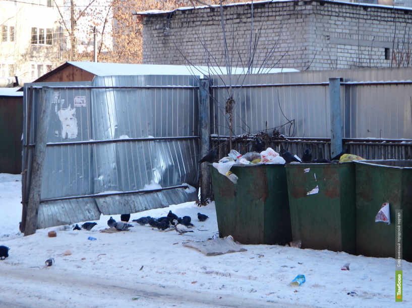 У главной тамбовской «мусорной» компании могут появиться конкуренты