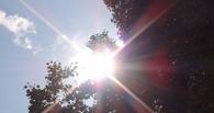 Тамбовчан ждет солнечный уикенд