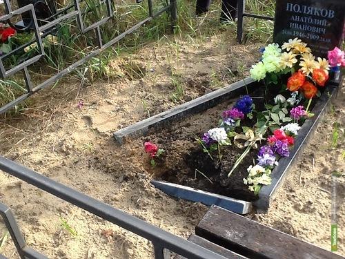 На кладбище в Котовске обнаружили разрушенные могилы