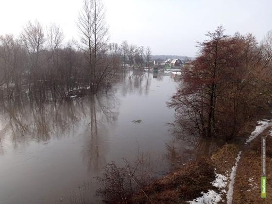 Большая вода отступает с Тамбовщины