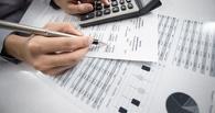 Мичуринская фирма задолжала свыше 28 миллионов рублей налогов
