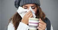 Как защитить организм в период простуд