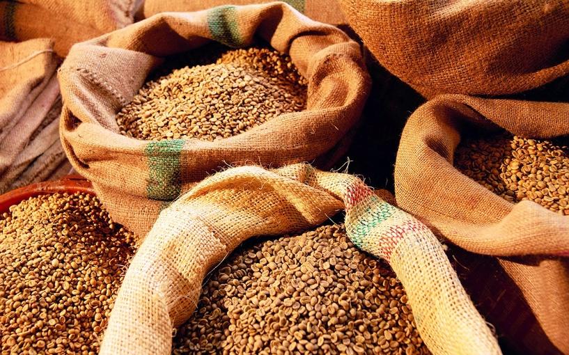 В Сампурском районе двое парней украли 350 килограммов зерна