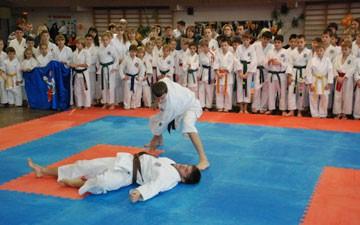 Тамбовчане привезли «серебро» с турнира по карате