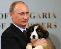 Патриарху Кириллу подарили овчарку как у Путина