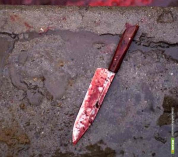 Тамбовские следователи раскрыли убийство школьницы