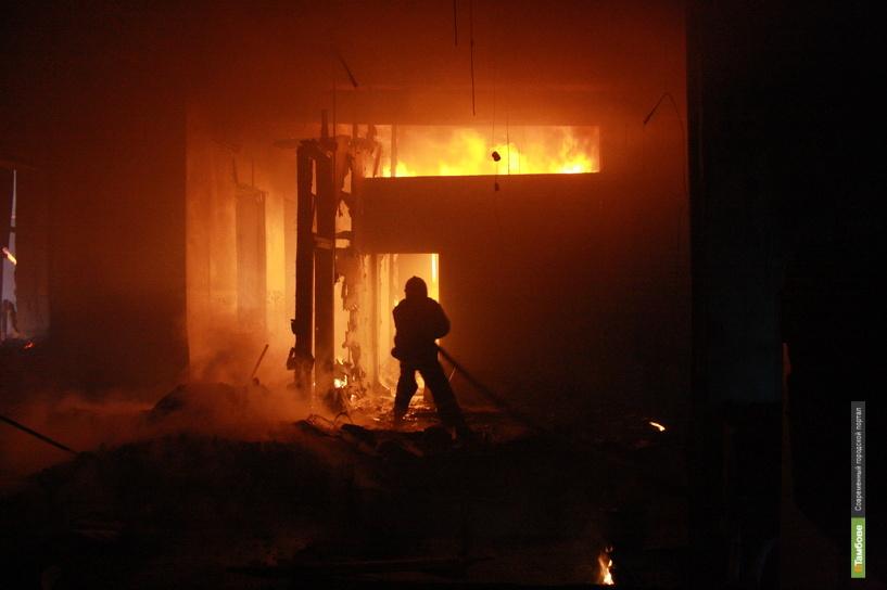 Пожар на Тамбовщине обошёлся без жертв