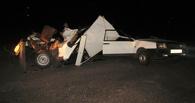 В ДТП под Кирсановом пострадали пять человек
