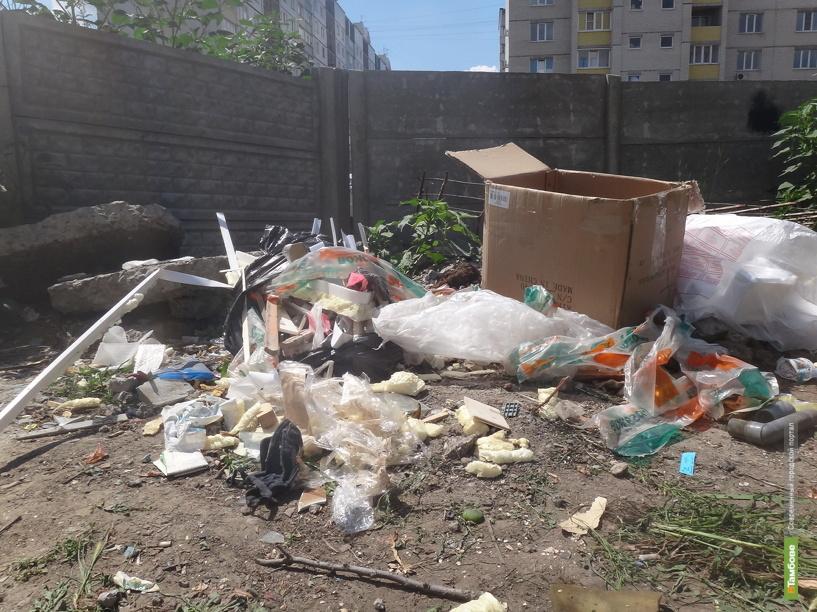 В Тамбове вывоз мусора стал серьёзной проблемой