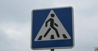 Тамбовские автоинспекторы проследят за пешеходами и водителями