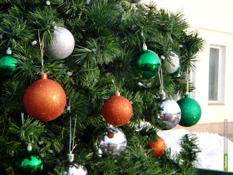 Тамбовчан ждет бесснежная новогодняя ночь