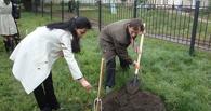 На Тамбовщине у каждого погибшего в годы Великой Отечественной войны появится именное дерево