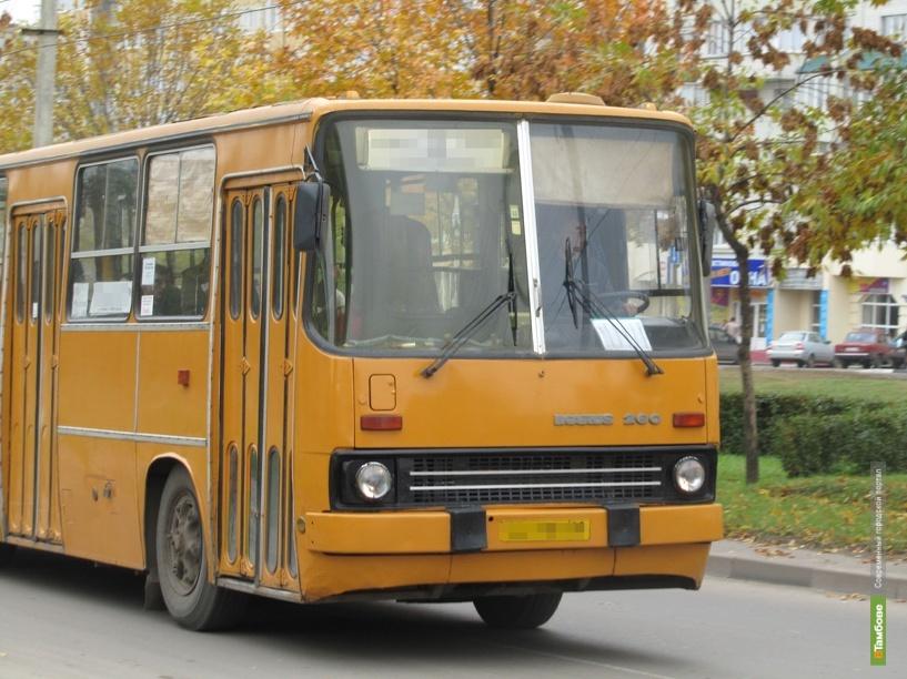 В Тамбове «сворачивают» свою работу автобусы сезонных маршрутов