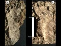 В Мексике нашли следы человека, жившего 7 тысяч лет назад
