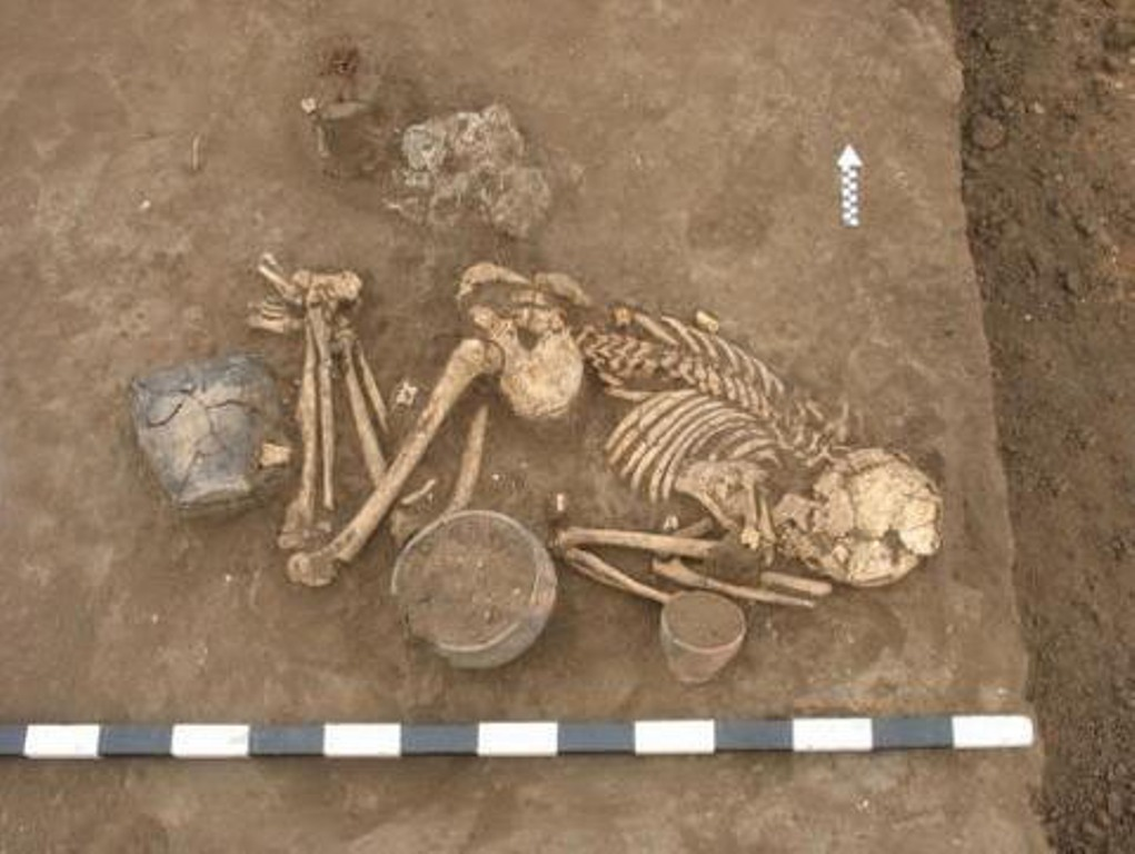 а затем полностью сменили их племена абашевской культуры, которые названы так по первому исследованному могильнику