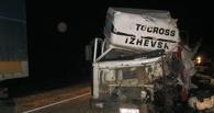 На трассе в Петровском районе столкнулись два грузовика: есть погибший