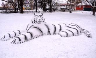 В Моршанске «завёлся» огромный белый тигр