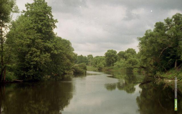Тамбовские реки станут чище