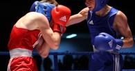 В Тамбове пройдёт областной чемпионат по боксу