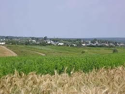 На тамбовскую свеклу и зерно потратят миллиарды