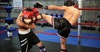 В Тамбове пройдет всероссийский турнир по кикбоксингу