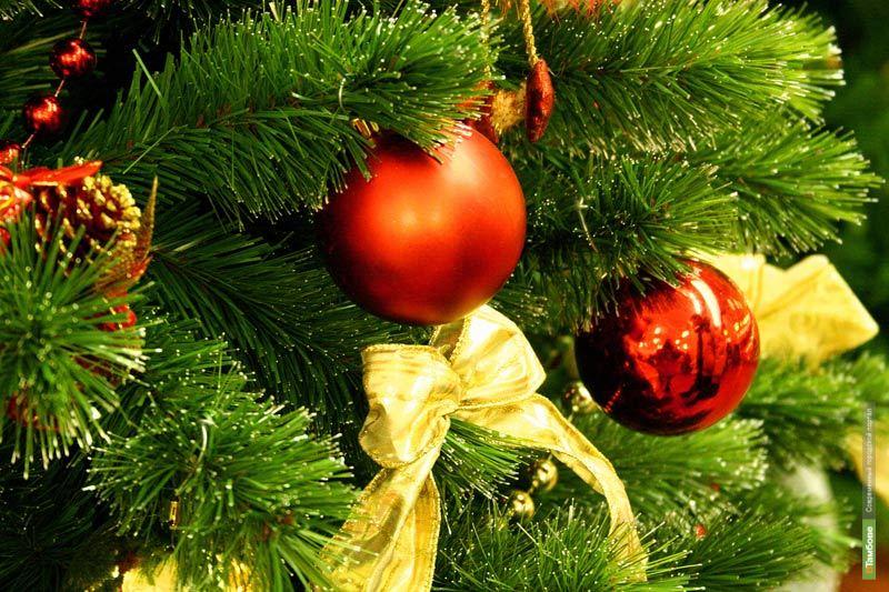 Проверено ВТамбове: Куда пойти в новогоднюю ночь