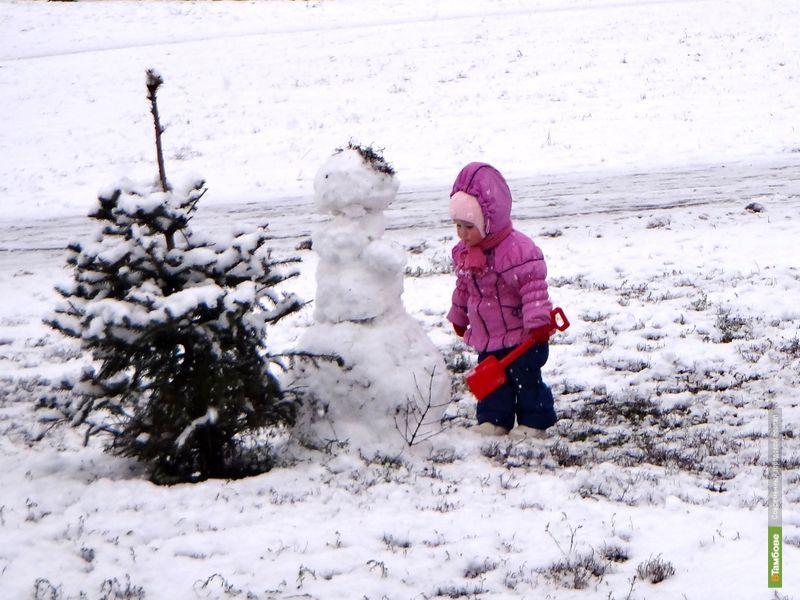 В Тамбове снег сменят дожди