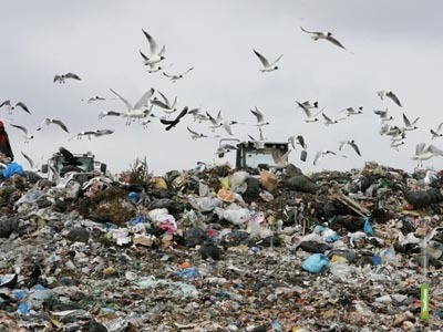 За год на Тамбовщине образовался почти миллион тонн отходов
