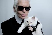 Немецкий модельер изволил жениться на собственной кошке