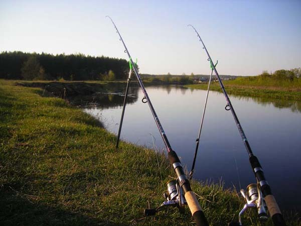 В Тамбовской области пройдет чемпионат по ловле на донную удочку