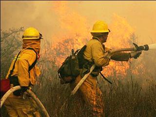На борьбу с лесными пожарами федеральный бюджет перечислит Тамбовщине более 56 млн. рублей