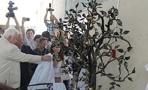 В честь юбилея Мичуринского ГАУ в вузе появилась скульптура «Яблоня»