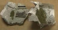 В минувшие сутки сотрудники полиции изъяли 45 граммов марихуаны