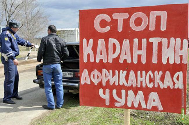 Въезды в Тамбовскую область планируют оборудовать полицейскими и ветеринарными постами