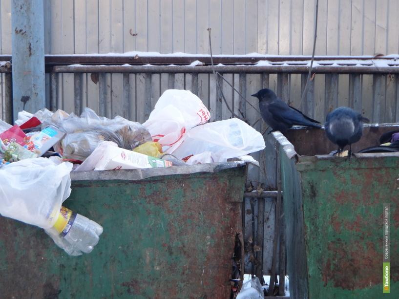Тамбовская горДума утвердила новый «мусорный механизм»