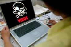 В МВД накрыли банду, похищавшую деньги через интернет