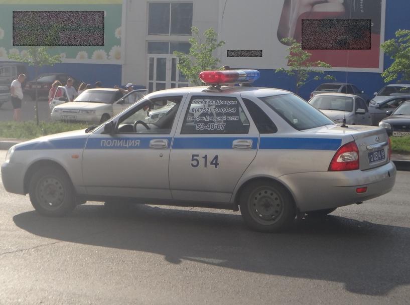 Два вора из соседних областей получили условные сроки за кражу в Тамбове